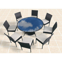 Outdoor / Dining Room Table with 8 Chairs / SGS (8214)