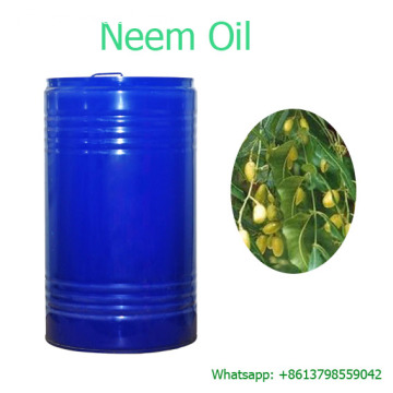 Carrier Oil Factory Meilleur prix Neem Oil