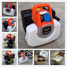 BISON(CHINA) small ac Generator inverter popular design 1kw power generator