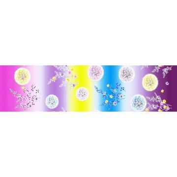 Microfibre brossée Disperse imprimé drap tissu