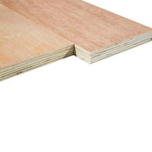 4x8 Commercial Plywood Furniture Grade 18mm Bintangor face