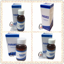 Antipyretic Paracetamol Syrup