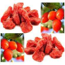 Zhongning Goji Berry Origine Chine, Super Goji Berry Ningxia Goji