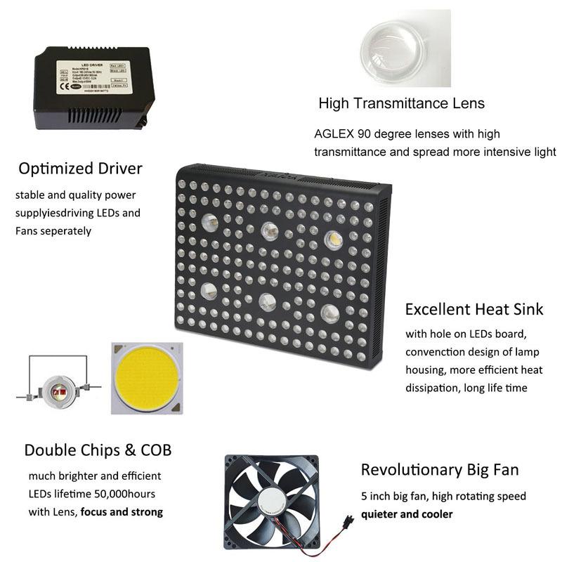 COB 3000w product details