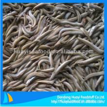 Oferta abundante fresca barata peixes congelados areia lance fundo preço