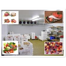 Wärmeisolierungs-Kühlraum für Fleisch-Lagerung