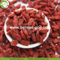 Hot Sale Super Kering Buah Anti Tumor Wolfberries
