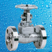 API602 Forged Stainless Steel F304L Flange End Gate Valve