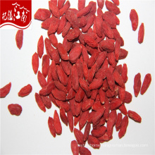 Manufacturer price wholesale new herb extract barbary wolfberry fruit
