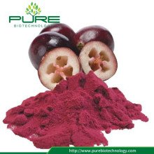 Hot Selling bubuk buah cranberry kering
