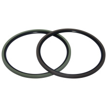 PTFE Rotary Shaft Seals (GNS) Seals
