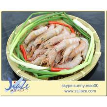 frozen pink shrimp IQF (Solenocera Meantho)