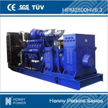 Honny Perkins Series High Voltage Generator, 725kVA - 2500kVA