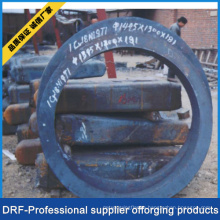 Ring Flange, Forging Rings, Factory Direct Supply