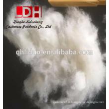 kirghize déhaired cru eco friendly fibre de cachemire blanc