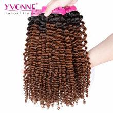 Top Grade Kinky Curly Ombre Brazilian Hair