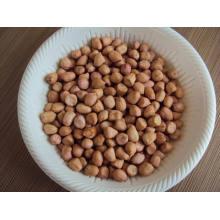 Nouveaux grains de cacahuètes à bonne qualité