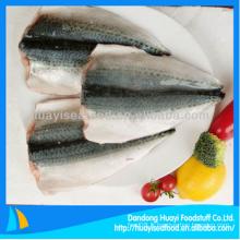 Filet de poisson au maquereau fraîchement congelé avec un bon fournisseur à long terme