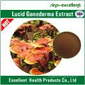 Polissacarídeo Lucid Ganoderma Extract Powder