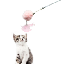 Cat Wand Toys dengan Feather and Pompom