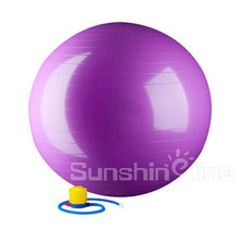 2016 in-Home Sport Ball Fitness Ball Exercise Stability Physical Therapy Ball