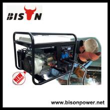 Bison China Zhejiang AVR para Generador Soldador 6kva Alternador 220V AC