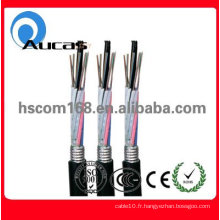 Câble fibre optique GYTA