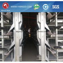 Geflügelfutter Hersteller H Typ Schicht Hühnerkäfig Bauernhof Ausrüstung