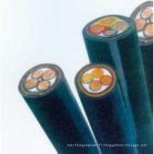 Gaine en silicone à isolation en téflon Câble 2,5 mm DC