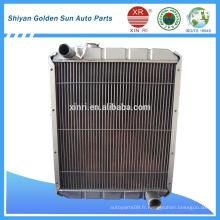 Radiateur de camion chinois de bonne qualité 1301DH39-010