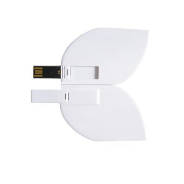 Lecteur flash USB Leaf Card