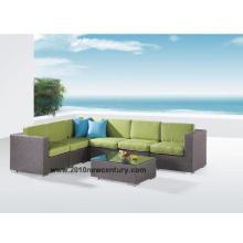 Muebles de patio (6021)