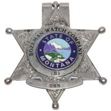 Kundenspezifisches Logo Polizei & Sicherheit Offizier Badge - Hard Enamel Cloisonne