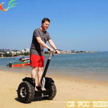 2015 Big Sale Wholesale Price Electric Chariot