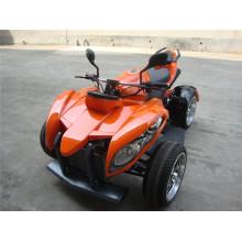 Новый 250cc ATV EEC одобрен для легального вождения