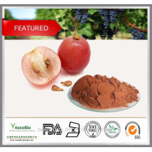 High Purity 100% Natural Antioxidants Grape Seed Extract Powder Proanthocyanidins 95%