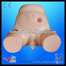 Modelo de cateterismo uretral masculino avançado ISO