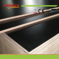 18mm Film Faced Plywood, Plywood Marine for Concrete Formwork