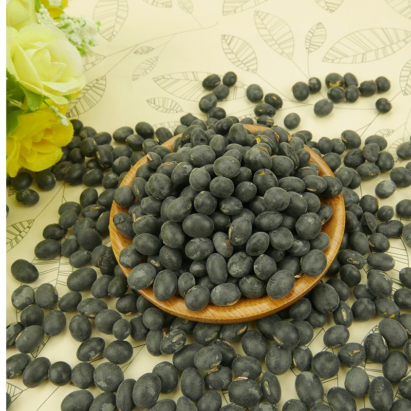 HPS Big Black Beans con Green Kernels