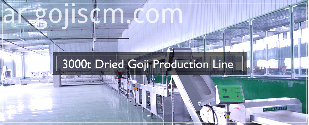 Attentive Picked Goji production line