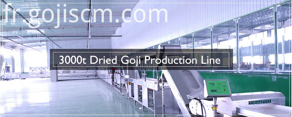 Dried Goji Berry production line