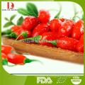 Dose frische Wolfberry / Goji Beere / Dosen Obst