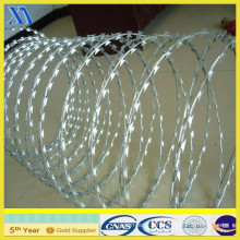 Electro Galvanized Barbed Wire for Fencing Xa001