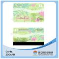 Carte de visite transparente de PVC givré par feuille d'or / argent