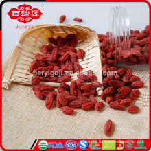 Dried goji berries health food
