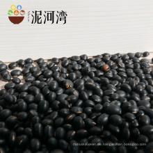 Chinesische kleine schwarze Kiney Bohne der hohen Qualität, Taschenbohne, alle Arten Bohnen