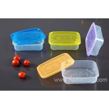 Boîte en plastique (HBPLB-1)