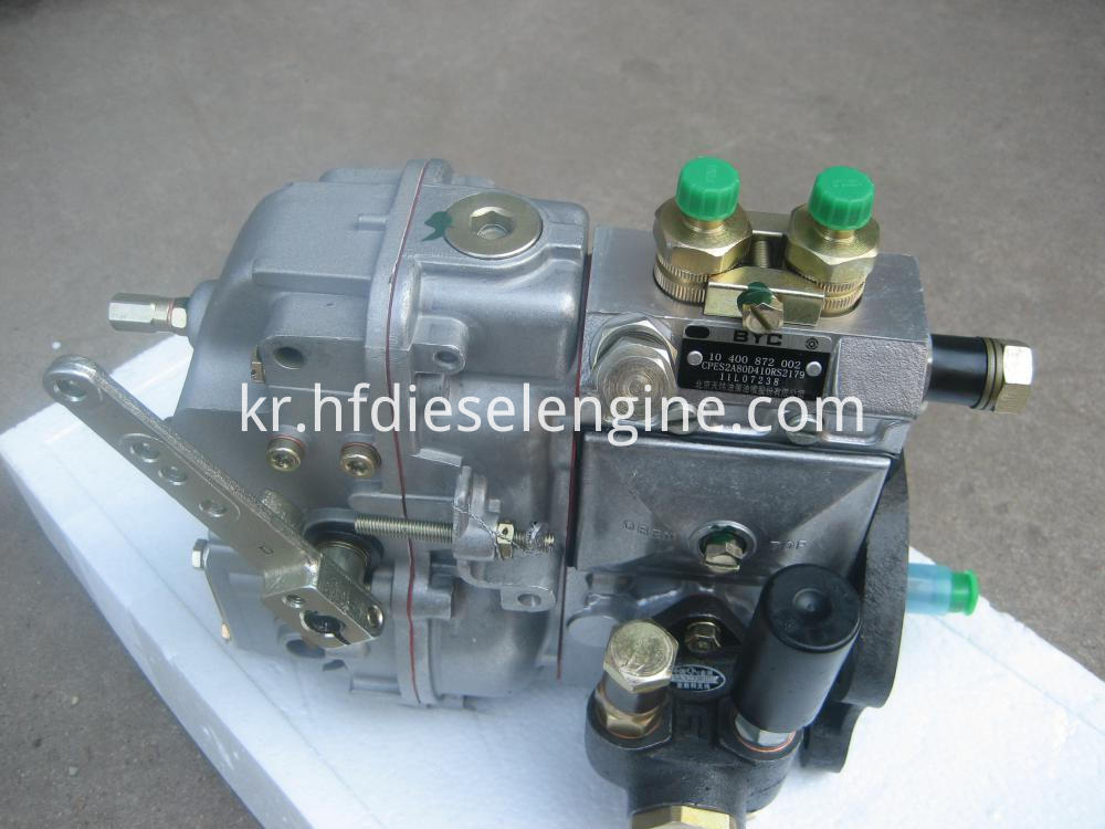 F2L912 fuel injection pump (1)