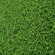 Golf Synthetic Grass Putting Green Carpets