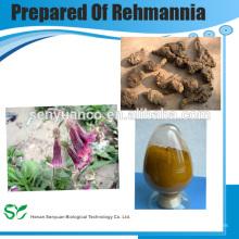 Приготовленный экстракт реманнии